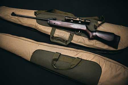 gun and gunbag